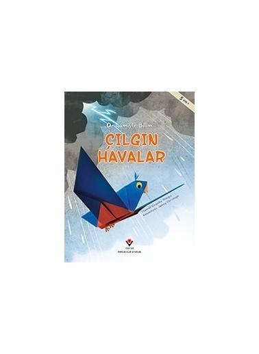 Morhipo kitap Çılgın Havalar - Origamiyle Bilim Renkli